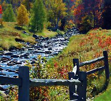 A stream in Fall-Mount Washington, Maine by John Taylor