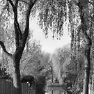 Behind the gardens by Lenka