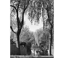 Behind the gardens Photographic Print