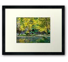 Autumn, Alfred Nicholas Memorial Gardens, Victoria, Australia. Framed Print