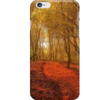 The Lane in the Woods iPhone Case/Skin