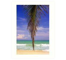 Shady Palm, Puerto Rico  Art Print