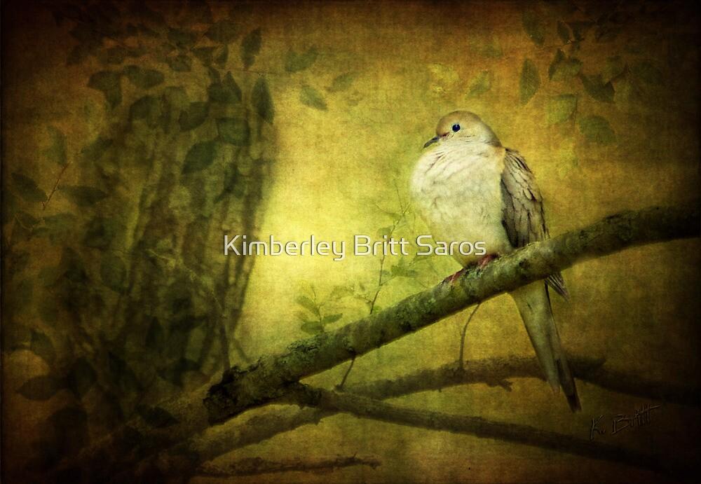 Bird of Peace by KBritt