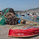 Lyme Regis, Dorset, UK by Pauline Tims