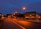 Parisian Street at Night by Yelena Rozov