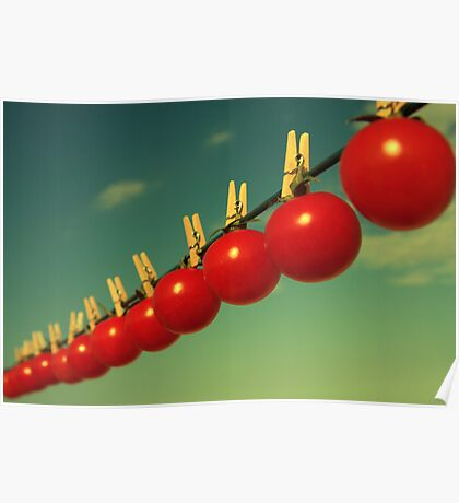 Sun dried tomatoes Poster