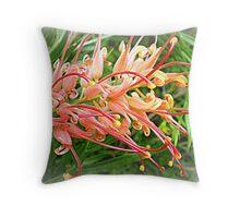 Grevillea, Australian Native No.3. Throw Pillow