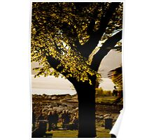 English Bay Tree Poster