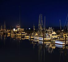 Crescent City harbor by pdsfotoart