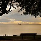 Overlooking English Bay by Rae Tucker