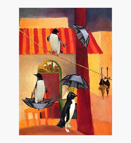 Penguin Cafe Photographic Print