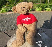 Bear n Plush by L J Fraser