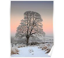 Winter Evening Poster