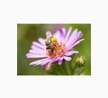 Cute bee on an Aster Unisex T-Shirt