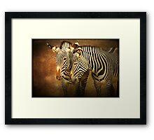 Zebra Couple Framed Print
