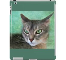Sweet Reverie-version 2 iPad Case/Skin