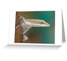 Lizard in the Backyard Greeting Card