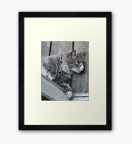 The Door Stops Here Framed Print
