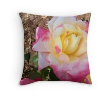 Tri-Color Roses Throw Pillow