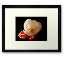 Standing out ©  Framed Print