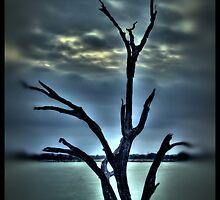 Dead Poet Tree by Scott Lebredo