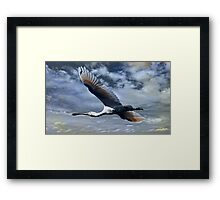 """""""Mystery Flight"""" Framed Print"""
