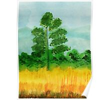 Big Pine alone in field, watercolor Poster