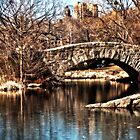 Central Park after the Cold by Mari  Wirta