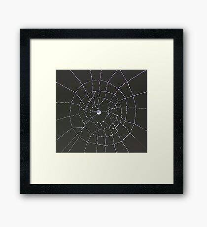 ~ Web Design ~ Framed Print