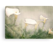Lillies in the Mist Canvas Print