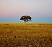 Endless Gold — The Tree by Brad Lynch