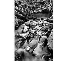 Peaceful Stream Photographic Print
