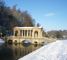 Winter - Palladian Bridge, Bath, England by Sean Sheridan