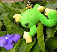Frog  ~  Padda  ~  {toadii latoysi} by Pieta Pieterse