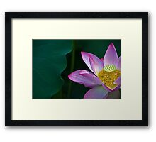 Clarity Of Heart Framed Print