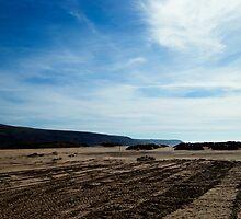 Barmouth Beach : Redux, Gwynedd, North Wales by GaryDanton