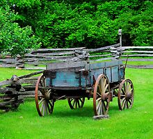 Wagon at Burnside Plantation..... by DaveHrusecky