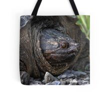 40 Million Years Of Evolution / Adult Snapping Turtle Tote Bag