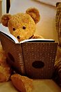 Clever Teddy by Astrid Ewing Photography