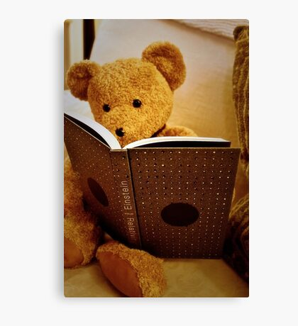 Clever Teddy Canvas Print