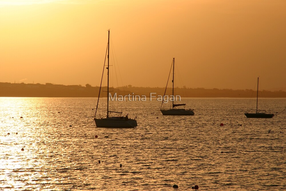 Boat Silhouette by Martina Fagan