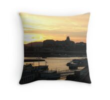 The Pink Danube Throw Pillow