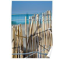 Bamboo Fence Poster