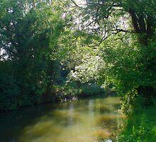 Medway Sunshine by Dave Godden