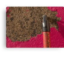 Peeling Pink & Red Canvas Print