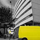 Yellow Black & White by Vanessa  Warren