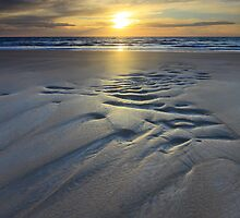 the sands return... by David Murphy