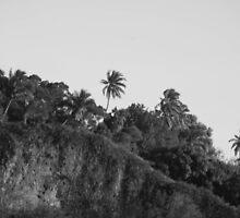 Tropical Slope by voluptuousokapi