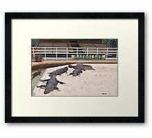 Welcome To Gatorland Framed Print