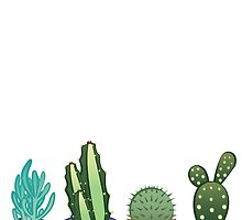 Succulents by lovelydeck